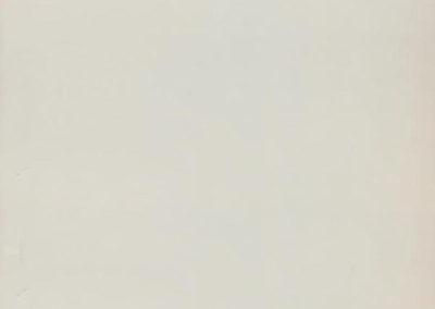 белый глянцевый